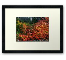 On The Other Side Of The Hill ~ Fall Colors ~ Framed Print
