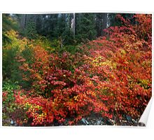 On The Other Side Of The Hill ~ Fall Colors ~ Poster