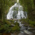 Nelson Falls by Andrew Durick