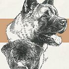 Akita Father and Son by BarbBarcikKeith