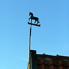 Sky horse weathervane by patjila