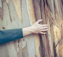 Tree Hug by Mark  Johnson