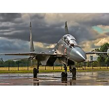 Flanker in the Rain Photographic Print
