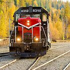 Pend Oreille Valley Area Railroad Engine #8310 by Jim Stiles