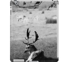 Resting Stag iPad Case/Skin