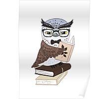 Professor Owl Poster