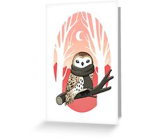 Winter Owl Greeting Card