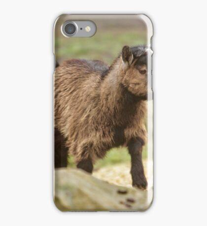 Pygmy Goat iPhone Case/Skin