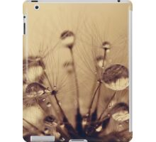 Toffee Drops iPad Case/Skin