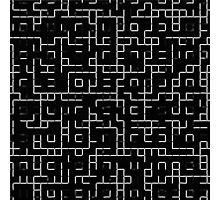 Enter The Maze Photographic Print