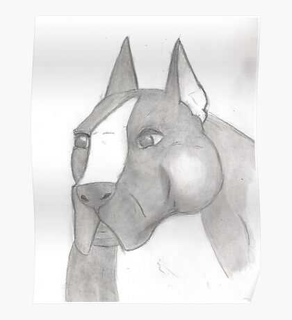 American Staffordshire Terrier Sketch Poster