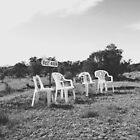 Rest Area by Stephanie Stengel | stelonature photography