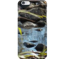 Tranquil Pond iPhone Case/Skin