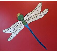 Painted Dragonfly Photographic Print