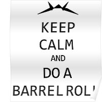 Keep Calm and Do A Barrel Roll Poster