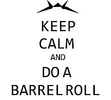 Keep Calm and Do A Barrel Roll Photographic Print