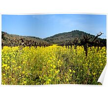 Mustard the Other Wine Poster