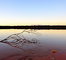 Coorong by STEPHANIE STENGEL | STELONATURE PHOTOGRAHY
