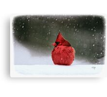 A Ruby In The Snow Canvas Print