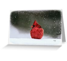A Ruby In The Snow Greeting Card