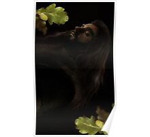 Thorin Poster