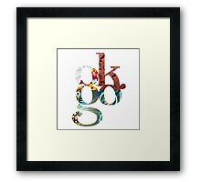 OK Go, All Four Albums Framed Print
