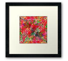 Poppy Splash Framed Print