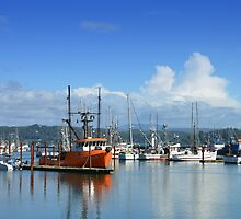 Oregon - Newport by Robert Baker
