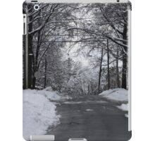 the winter in nj iPad Case/Skin