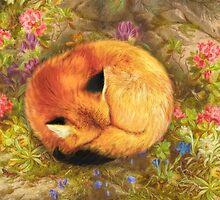The Cozy Fox by Aimee Stewart