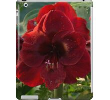 Vivid Scarlet Amaryllis Flowers - Happy Holidays! iPad Case/Skin