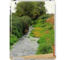 Country Mail iPad Case/Skin