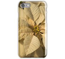 Elegant Ivory Poinsettia - An Exotic Christmas Greeting iPhone Case/Skin