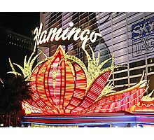 Flamingo Las Vegas Photographic Print