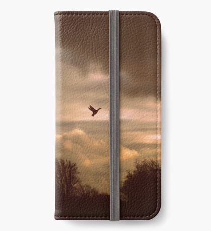Hope iPhone Wallet/Case/Skin