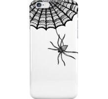Spider's Web iPhone Case/Skin