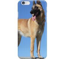 2015 Malinois  iPhone Case/Skin