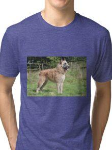 2015 Laekenois Tri-blend T-Shirt