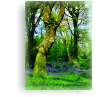 Fairy Playground Canvas Print