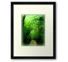 Misty Morning in the Forest Framed Print