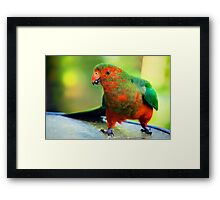 Young Man.... Framed Print