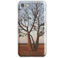 Baby Boab iPhone Case/Skin