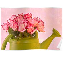 Pink Roses In Green Watering Can Poster