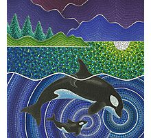 Orca Sonic Love Photographic Print