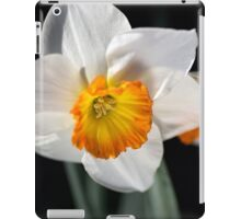 Daffodil Dressed in White iPad Case/Skin
