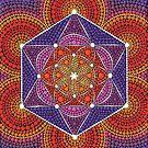 Fire Star- Genesis Pattern by Elspeth McLean