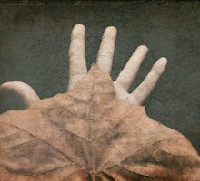 Hand of Nature by MichelleAyn