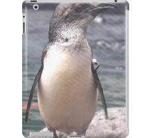 Little Blue Penguin Christchurch New Zealand iPad Case/Skin