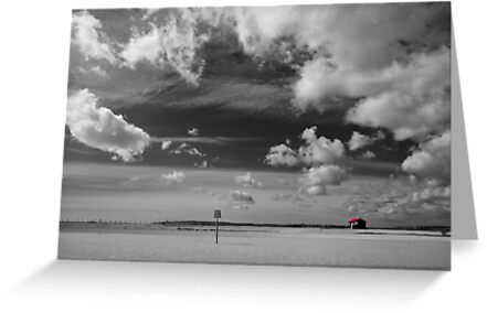 Little Red Roof, Rye Harbour by Rachael Talibart