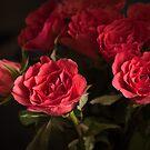 4 Lovers by Danuta Antas